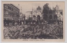 Venezia Piccioni In Piazza S. Marco - Venezia (Venice)