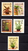 SAINT  HELENA    1993    Flowers    Set  Of  5    MNH - Saint Helena Island