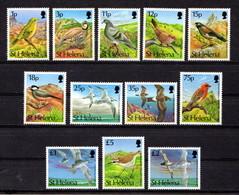 SAINT  HELENA    1993    Birds    Set  Of  12    MNH - Saint Helena Island