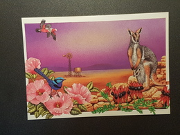 Blumen Des Outbacks, Bild Von Cheryl Garrett, Australien ( Nicht Gelaufen Ca. 1995); H24 - Blumen