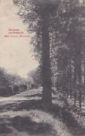 Waremme Les Remparts Circulée En 1907 - Waremme