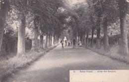 Saint-Trond Allée Des Soupirs Circulée En 1919 - Diest