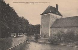 78 - PLAISIR - Grands Etablissements D' Aviculture De Plaisir Grignon - La Mare Aux Canards - Plaisir