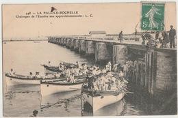17 - LA ROCHELLE - CHALOUPES DE L ESCADRE - La Rochelle