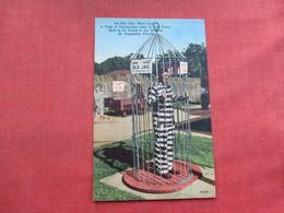 Bird Cage Old Jail St Augustine Florida     Ref 3282 - Gevangenis