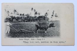 NATIVE PLOUGH. ILOILO – PANAY, P.I. Philippines Philippine Islands, 1906 - Philippines