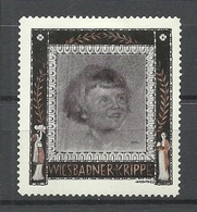 Deutschland Ca 1910 Wiesbadner Krippe Wohlfahrt Kinderhilfe * - Vignetten (Erinnophilie)