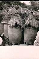 CPSM165.....MOKOLO - Cameroun