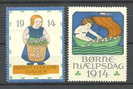 DENMARK 1914 Charity Vignette Child Protection Kinderhilfe * - Dänemark