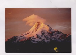 CPM MT HOOD, OREGON S HIGHEST PEAK En 2005! (voir Timbre) - Etats-Unis