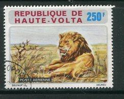 HAUTE VOLTA- P.A Y&T N°143- Oblitéré (lions) - Haute-Volta (1958-1984)