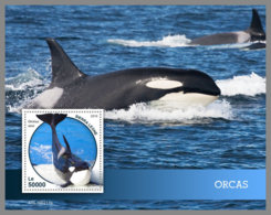 SIERRA LEONE 2019 MNH Orcas S/S - OFFICIAL ISSUE - DH1914 - Baleines