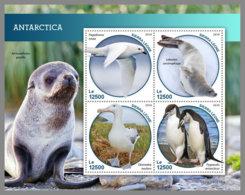 SIERRA LEONE 2019 MNH Antarctica Animals Tiere Der Antarktis M/S - OFFICIAL ISSUE - DH1914 - Faune Antarctique