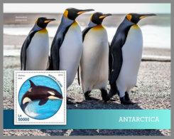 SIERRA LEONE 2019 MNH Antarctica Animals Tiere Der Antarktis S/S - OFFICIAL ISSUE - DH1914 - Faune Antarctique