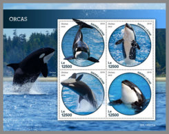 SIERRA LEONE 2019 MNH Orcas M/S - IMPERFORATED - DH1914 - Baleines
