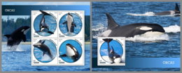 SIERRA LEONE 2019 MNH Orcas M/S+S/S - IMPERFORATED - DH1914 - Baleines
