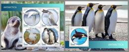 SIERRA LEONE 2019 MNH Antarctica Animals Tiere Der Antarktis M/S+S/S - IMPERFORATED - DH1914 - Antarctic Wildlife