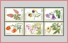 Grecia Greece 1978 - Cat. 1280/85 (MNH **) Flora Della Grecia - Flora Of Greece (001832) - Grecia