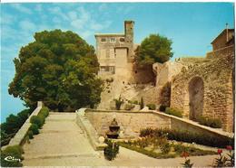 LAURIS SUR DURANCE - Le Château - Frankrijk