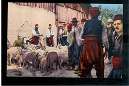 BOSNIA Marktszene Bosnien Schafmarkt Ca 1920 OLD POSTCARD - Bosnia And Herzegovina