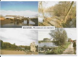 VN 03138 Hamme  Mirabrug, Filip De Pillecynmonument, Binnenbunt En Wandelpad Oude Durme - Hamme