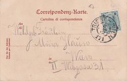 AUTRICHE  CARTE AVEC CACHET FERROVIAIRE/ZUGSTEMPEL TRIEST-WIEN - 1850-1918 Empire