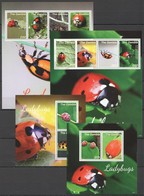 SS457 2014 GAMBIA INSECTS LADYBUGS 2KB+2BL MNH - Insectes