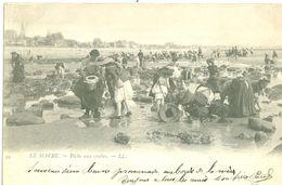 (76) LE HAVRE : Pêche Aux Crabes (animée) (dos Non Divisé) - Le Havre