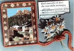 """3271 """" QUEL MAZZOLIN DI FIORI CHE VIEN DALLA MONTAGNA  """" VILLAGGIO MONTANO E STELLE ALPINE CART. POS. ORIG.SPEDITA 1967 - Musica"""