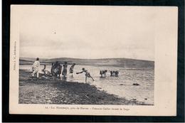 ETHIOPIE  Lac Haramaya Près De Harrar - Femmes Gallas Lavant Le Linge Ca 1905 OLD  POSTCARD - Ethiopië