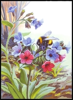 UKRAINE. MEDICAL AND MELLIFEROUS PLANTS. Pulmonaria Obscura Dumort. BUMBLEBEE. Unused Postcard, 2018 UkrPost Issue - Heilpflanzen