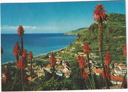 Madeira - Vila Da Ribeira Brava - (Madeira) - Madeira