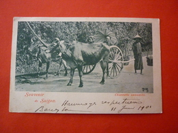 CPA   SOUVENIR DE SAIGON  CHARRETTE ANNAMITE  PRECURSEUR 1904 - Viêt-Nam