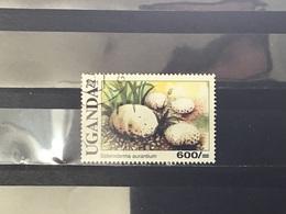 Oeganda / Uganda - Paddenstoelen (600) 2001 - Oeganda (1962-...)