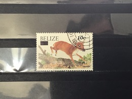 Belize - Dieren (10) 2004 - Belize (1973-...)