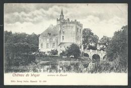 +++ CPA - Environs De Hasselt - Château De WEYER - Kasteel    // - Hasselt