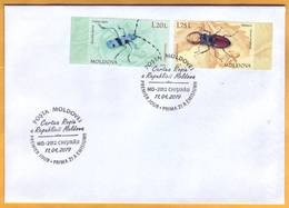 2019 Moldova Moldavie  FDC Used  Red Book. Alpine Longhorn Beetle.  Stag Beetle Cover Fauna - Insectes