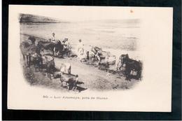 ETHIOPIE Lac Aramaya Pres De Harar  Ca  1905 OLD  POSTCARD - Ethiopië