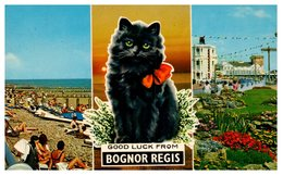 BOGNOR REGIS - Chat (pli Coin Droit) - Bognor Regis