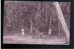ETHIOPIE Contrées Galla Forêt Vierge De Baroda Ca  1905 OLD  POSTCARD - Ethiopië