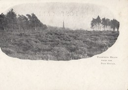 CPA (  Angleterre )    Tadworth Heath From The Post Office - Surrey