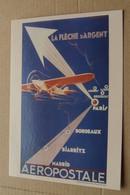Aeropostale - La Flèche D'Argent - Entier Postal Monde 20g - Unclassified