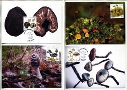 Serbia 2019 Flora, Fungi, Mushrooms,MC Private Issue, MNH - Serbia