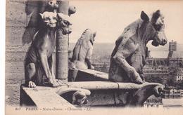 CPA 75 @ PARIS NOTRE DAME - CATHEDRALE - CHIMERES GARGOUILLES - Chiens Vache - Notre Dame De Paris