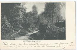 Linkebeek - Le Grand Ravin - 1900 - Linkebeek