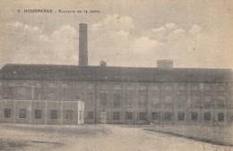 Postkaart - Carte Postale HOEGAARDEN Sucrerie De La Jette  (o695) - Hoegaarden