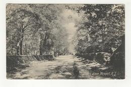 NEWPORT, Rhode Island, USA, Lover's Lane, 1908 UB Postcard - Newport
