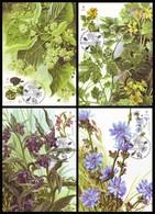 UKRAINE 2017. MEDICAL AND MELLIFEROUS PLANTS. Set Of 4 Stamps Mi-Nr. 1629-32. MAXICARDS - CARTES MAXIMUM - Ukraine