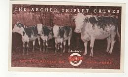 HOUSTON, Texas, USA, Archer Triplet Calves, Archer's Vitalized Calf Feeds, 1940's  Advertising Postcard - Houston