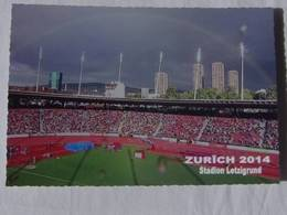 Stade De ZURICH En 2014 - Stadion Etzigrund - Stades